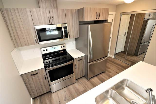 207 1506 Tamarack Boulevard, Edmonton, AB T6T 2J5 (#E4224300) :: The Foundry Real Estate Company