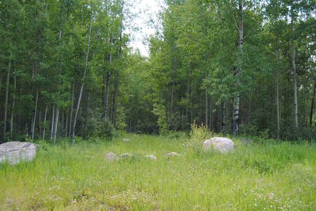 280017 Twp Rd 482, Rural Wetaskiwin County, AB T0C 2P0 (#E4224505) :: The Foundry Real Estate Company