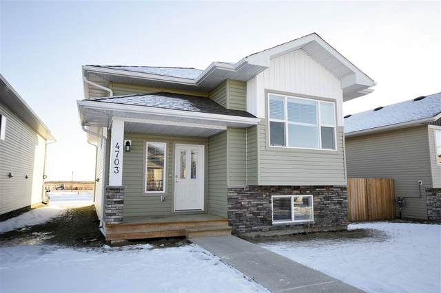 4703 38A Street, Bonnyville Town, AB T9N 0E2 (#E4224561) :: The Foundry Real Estate Company