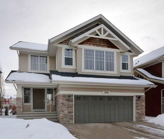 1335 Kapyong Avenue, Edmonton, AB T5E 1H9 (#E4224711) :: The Foundry Real Estate Company