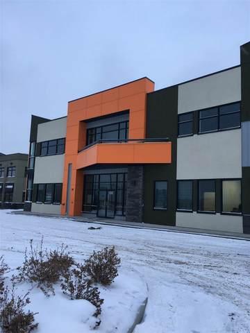 #101 1803 91 Street Sw SW, Edmonton, AB T6X 0W8 (#E4224847) :: The Foundry Real Estate Company