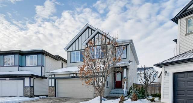 21852 95A Avenue, Edmonton, AB T5T 3Y6 (#E4225224) :: The Foundry Real Estate Company