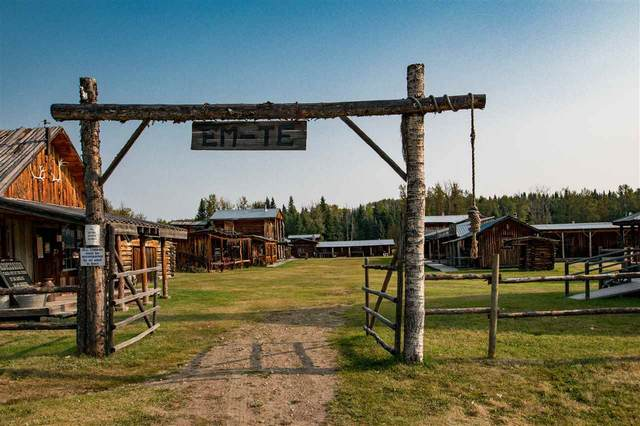 75064 Tp Rd 454 ( Alder Flats) Em-Te Town Western Town, Rural Wetaskiwin County, AB T0C 0A0 (#E4225266) :: The Foundry Real Estate Company