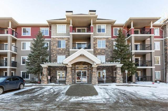 313 2098 Blackmud Creek Drive, Edmonton, AB T6W 1T7 (#E4225645) :: Initia Real Estate