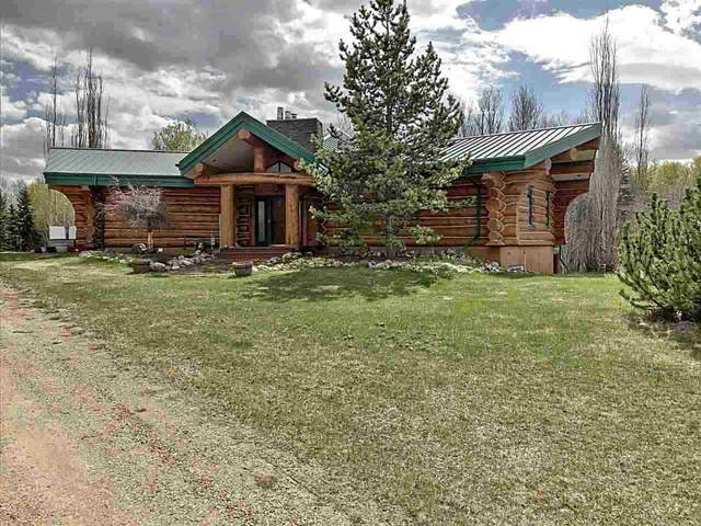 90 50247 RGE RD 232, Rural Leduc County, AB T4X 0K9 (#E4225745) :: The Foundry Real Estate Company