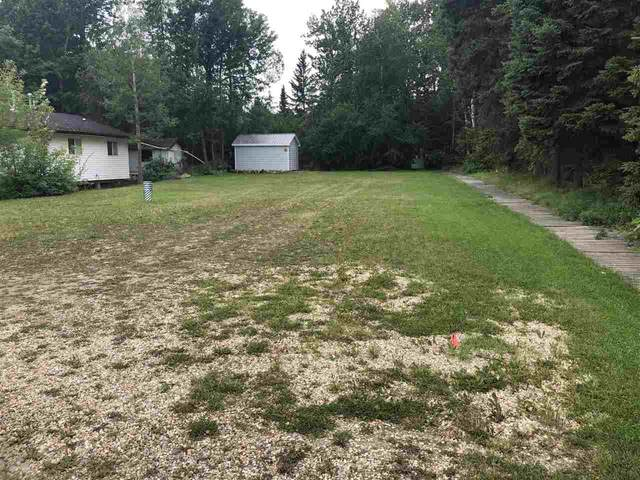 98 Grandview Beach, Rural Wetaskiwin County, AB T0C 2V0 (#E4225839) :: The Foundry Real Estate Company