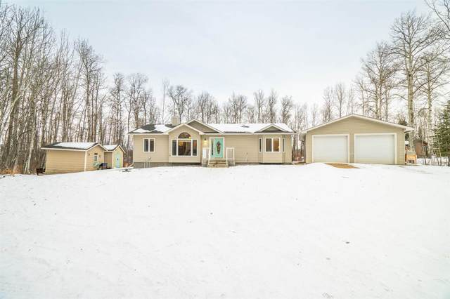 66 51520 RR 200A, Rural Beaver County, AB T0B 4J0 (#E4225927) :: Initia Real Estate