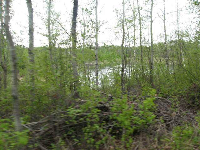 3 1120 Twp Rd 549, Rural Parkland County, AB T7Z 1X3 (#E4225944) :: The Foundry Real Estate Company