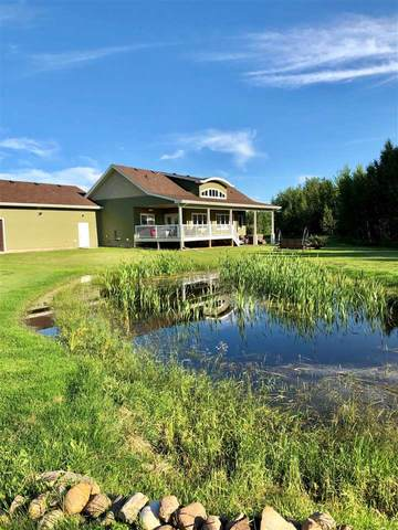 10-243050 Twp 474, Rural Wetaskiwin County, AB T0C 1Z0 (#E4227599) :: RE/MAX River City