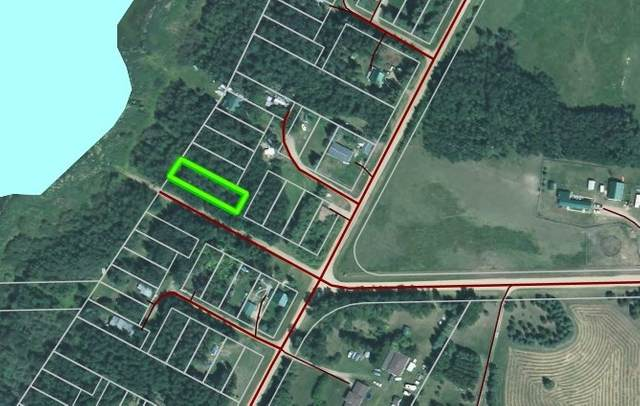 Lot 10 Cottonwood Parkway, Rural Wetaskiwin County, AB T0C 1H0 (#E4227623) :: The Foundry Real Estate Company