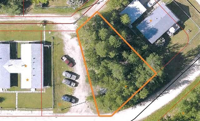 4702 48 Avenue, Lodgepole, AB T0E 1K0 (#E4228268) :: Initia Real Estate