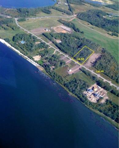 353 68268 RGE RD 132A, Rural Lac La Biche County, AB T0A 2C0 (#E4229428) :: The Foundry Real Estate Company