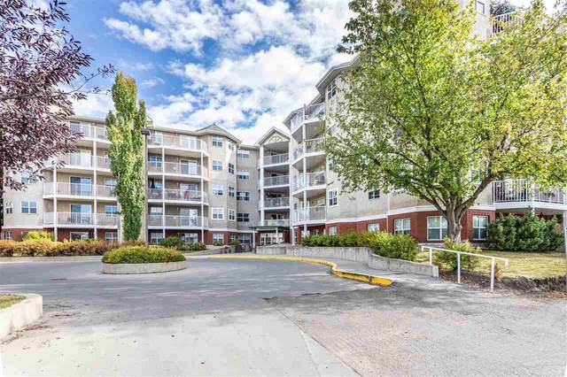 102 8315 83 Street, Edmonton, AB T6C 4R8 (#E4229609) :: Initia Real Estate