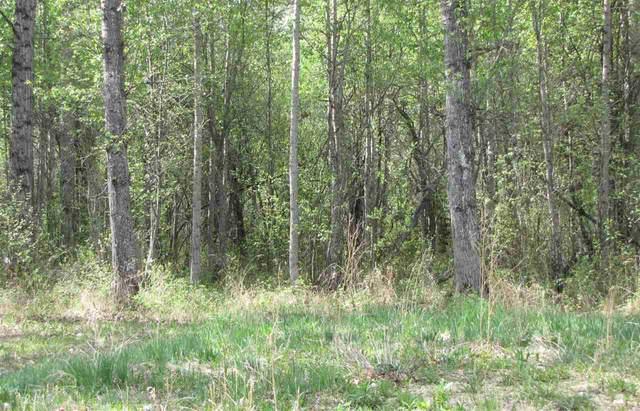 311 Lessard Landing, Rural Lac Ste. Anne County, AB T0E 0J0 (#E4229653) :: RE/MAX River City