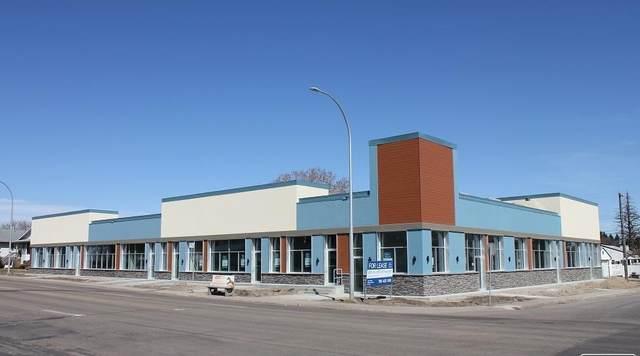 9333 156 ST SW, Edmonton, AB T5R 1Z5 (#E4229733) :: RE/MAX River City