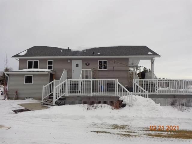 117 2 Street, Rural Wetaskiwin County, AB T0C 0T0 (#E4229809) :: Initia Real Estate