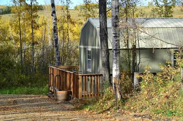 443001 Range Road 12, Rural Ponoka County, AB T0C 0M0 (#E4229968) :: Initia Real Estate
