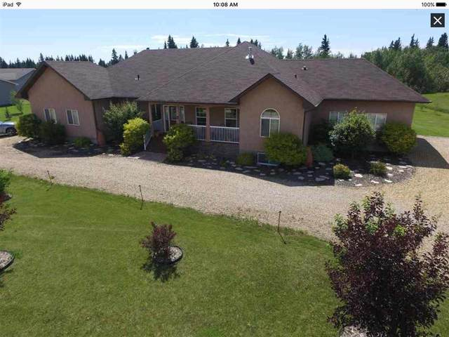 42 242075 TWP RD 472, Rural Wetaskiwin County, AB T0C 1Z0 (#E4230354) :: RE/MAX River City