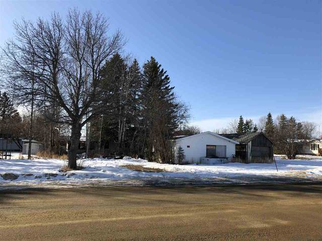 401 Lakeshore Dr E, Rural Wetaskiwin County, AB T0C 0T0 (#E4231531) :: Initia Real Estate