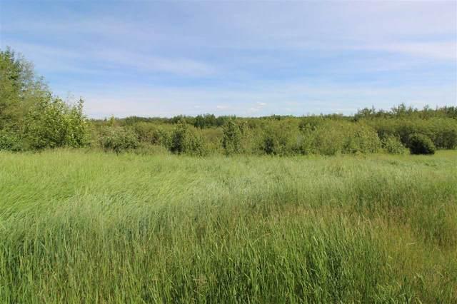 67 Landing Drive, Rural Sturgeon County, AB T0A 1N0 (#E4232480) :: Initia Real Estate