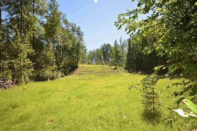 4903 48 Street, Rural Lac Ste. Anne County, AB T0E 0A0 (#E4232619) :: Initia Real Estate