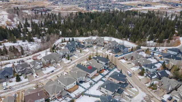 1735 Bowness Wynd, Edmonton, AB T6W 1P1 (#E4233458) :: Initia Real Estate