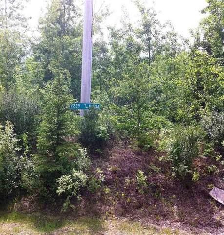 2229 Twp Rd 534, Rural Parkland County, AB T0E 1V0 (#E4234276) :: The Foundry Real Estate Company