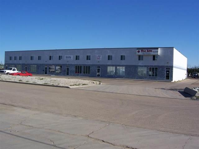 3739 69 AV NW, Edmonton, AB T6B 3G4 (#E4234989) :: Initia Real Estate