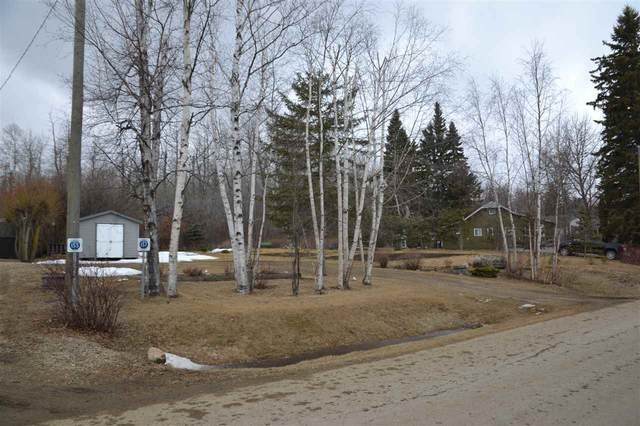 157 Crystal Springs Drive, Rural Wetaskiwin County, AB T0C 2V0 (#E4235152) :: Initia Real Estate