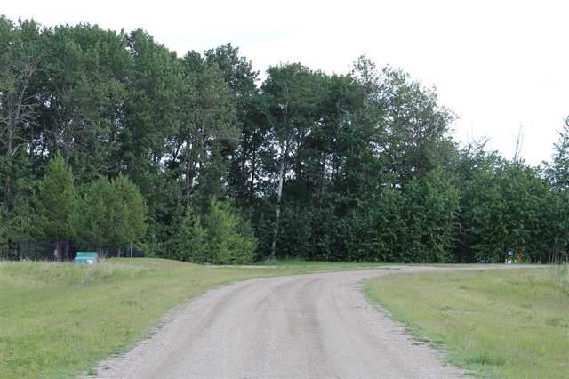 348018 Highland Estates, Rural Wetaskiwin County, AB T0C 2V0 (#E4235201) :: Initia Real Estate
