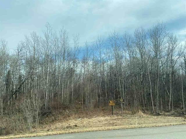 38 51042 RGE RD 204, Rural Strathcona County, AB T8G 1E5 (#E4235423) :: Initia Real Estate