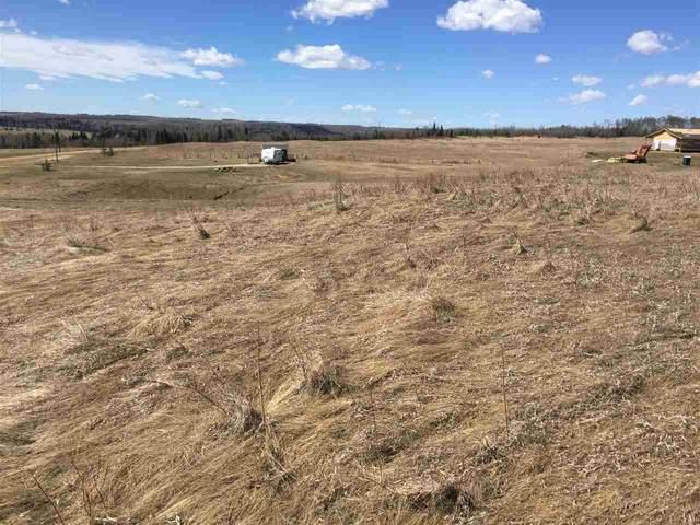 16 River Ridge Estates, Rural Wetaskiwin County, AB T0C 2V0 (#E4235673) :: Initia Real Estate