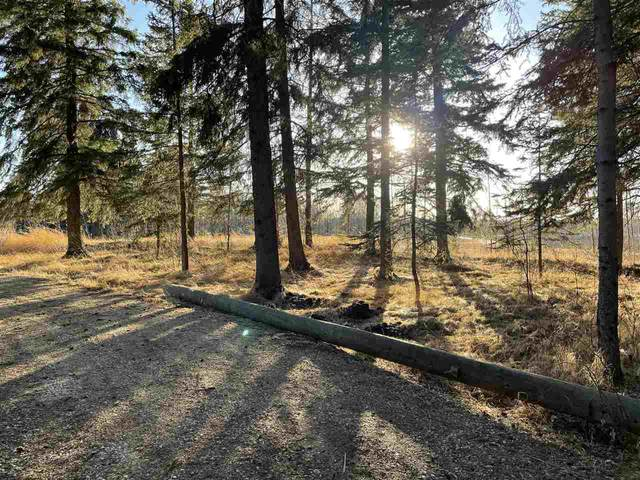 4 53120 RGE RD 15, Rural Parkland County, AB T7X 3A9 (#E4236075) :: Initia Real Estate