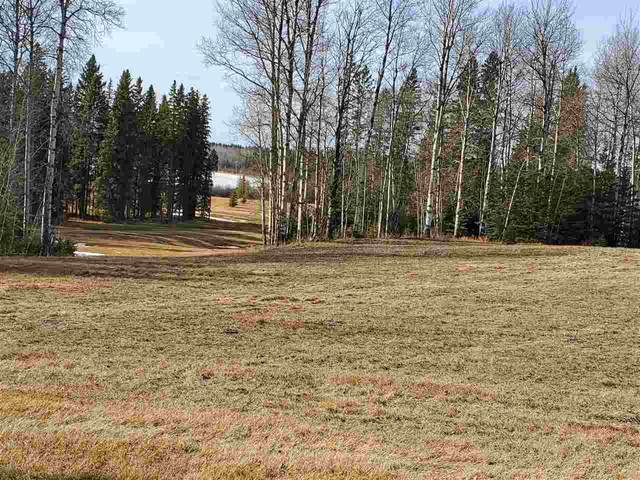 73 Silversprings, Rural Wetaskiwin County, AB T0C 0T0 (#E4236271) :: RE/MAX River City