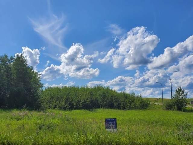 1417 Horseshoe Bay Estates, Cold Lake, AB T9M 1G8 (#E4236644) :: Initia Real Estate