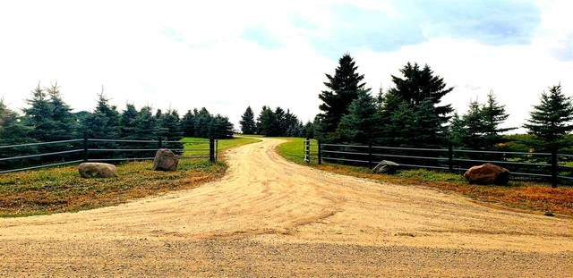 24509 South Pine Lake Road, Rural Red Deer County, AB T4N 6X5 (#E4237927) :: Initia Real Estate