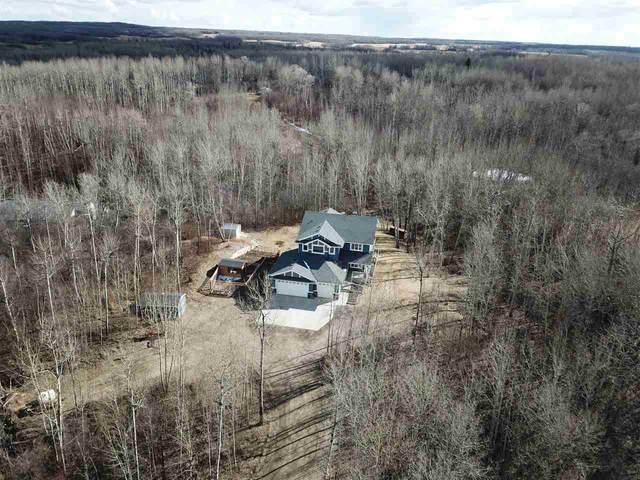 203 54419 Range Rd 14, Rural Lac Ste. Anne County, AB T0E 0J0 (#E4238066) :: Initia Real Estate