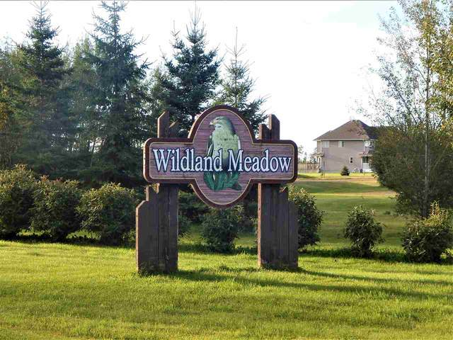 21539 Twp Rd 503, Rural Leduc County, AB T0B 3M0 (#E4238220) :: Initia Real Estate
