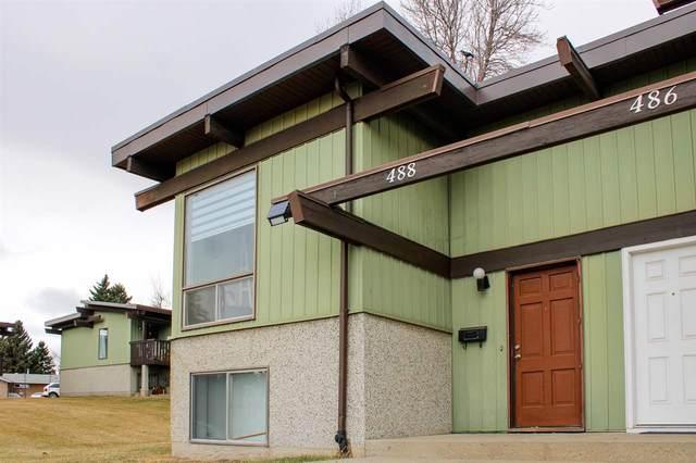 488 Lee Ridge Road, Edmonton, AB T6K 2K3 (#E4238385) :: Initia Real Estate