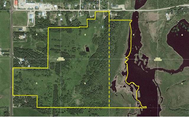 207 Lakeshore Drive W, Rural Wetaskiwin County, AB T0C 0T0 (#E4239052) :: Initia Real Estate