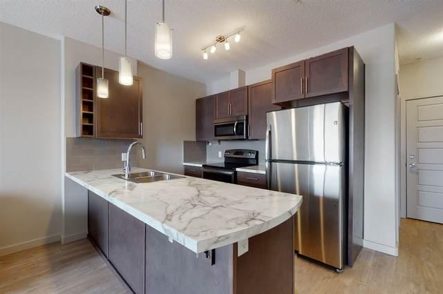 317 1004 Rosenthal Boulevard, Edmonton, AB T5T 7C6 (#E4239462) :: Initia Real Estate