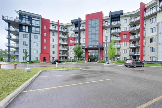 410 11080 Ellerslie Road, Edmonton, AB T6W 2C2 (#E4239837) :: Initia Real Estate