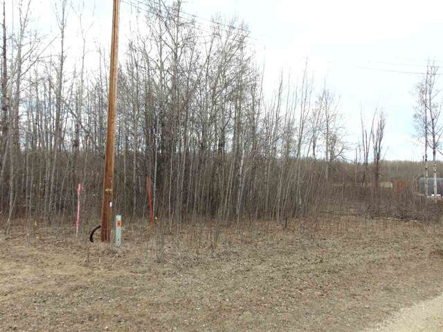 81 15065 TWP RD 470, Rural Wetaskiwin County, AB T0C 2C0 (#E4240270) :: Initia Real Estate