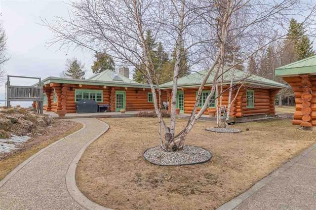67 Silver Beach, Rural Wetaskiwin County, AB T0C 2C0 (#E4241002) :: Initia Real Estate