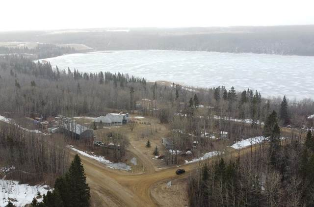 20001 Twp Rd 462 A, Rural Wetaskiwin County, AB T0C 0V0 (#E4241376) :: Initia Real Estate
