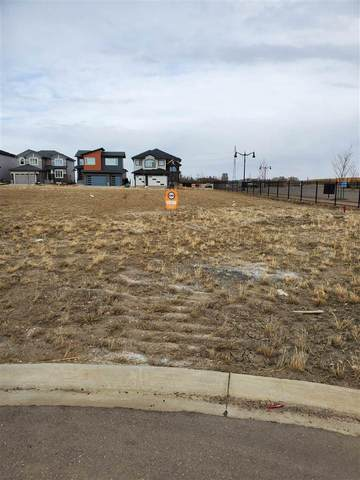 3060 59 Avenue NE, Rural Leduc County, AB T4X 0X9 (#E4241395) :: The Good Real Estate Company