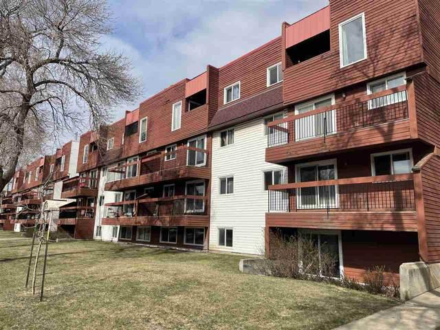 309 10555 93 Street, Edmonton, AB T5H 4C1 (#E4241548) :: Initia Real Estate