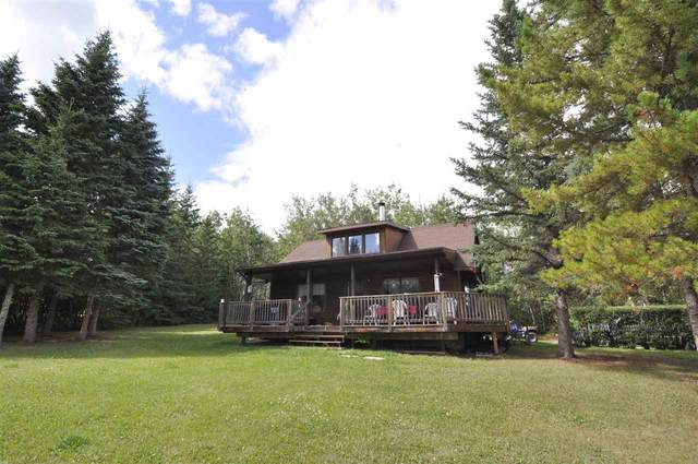 45 562007 Rge Rd 113, Rural Two Hills County, AB T0B 4R0 (#E4241608) :: Initia Real Estate