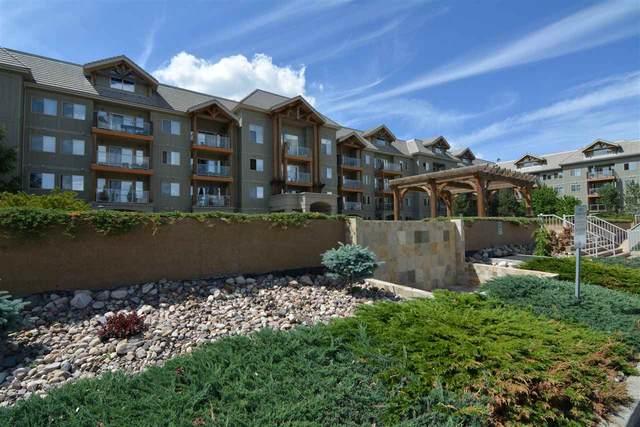 219 278 Suder Greens Drive, Edmonton, AB T5T 6V6 (#E4241627) :: Initia Real Estate