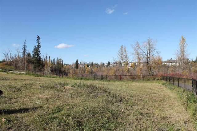 19-10550 Ellerslie Road, Edmonton, AB T6W 0Y2 (#E4242284) :: Initia Real Estate